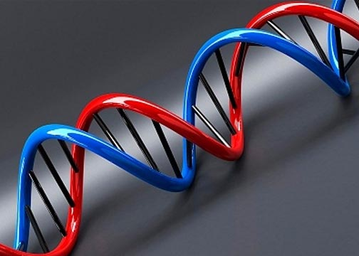 British researchers use DNA to archive massive amounts of data