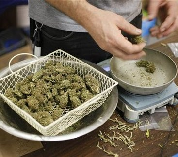 Health Expo to Tell About Benefits of Medical Marijuana