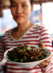 Insects Could Soon Be Introduced in Food Menus