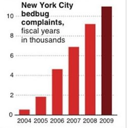 Attempts made to stop bedbugs' infestation in NYC