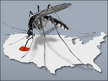 West Nile Taking its Toll in the US