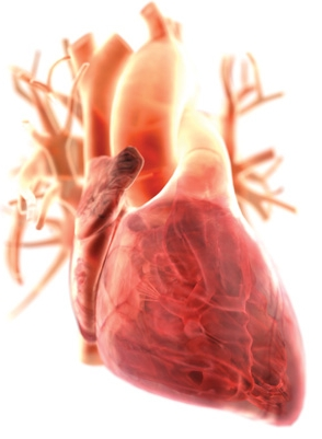 Extra heart testing might be needed by depressed people